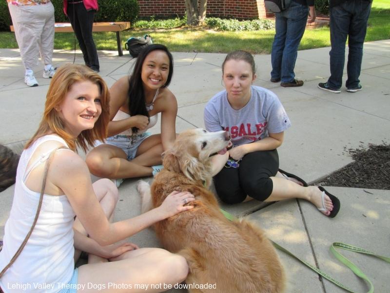DeSales University de-stress day