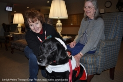 11_spnw_therapy-dogs-at-devonhouse-2