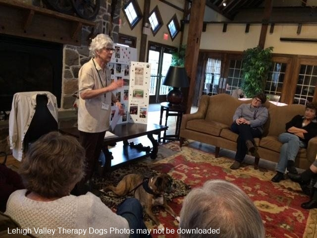2019.FourSeasons.FamingtonClubhousePresentation.COCO_.What-is-a-Therapy-Dog.
