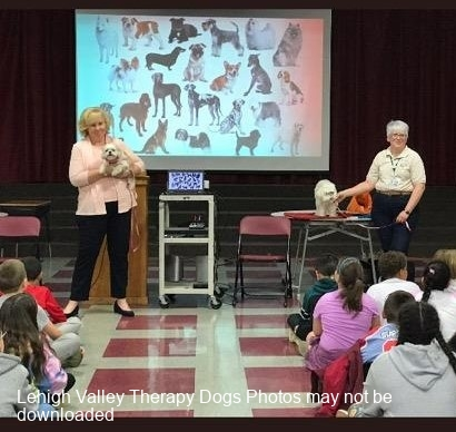 2019.PhillipsburgElem.4thGr.-MollieMr-Peabody.-What-is-a-Therapy-Dog