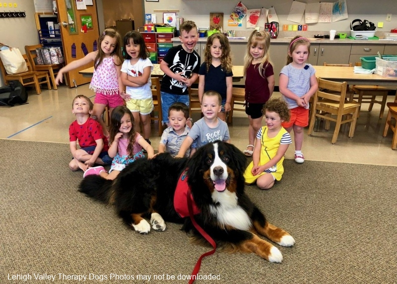 Duke-and-friends-at-Asbury-Pre-school.6.2018