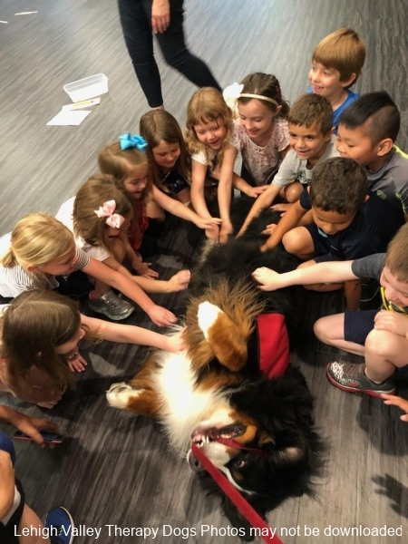 Duke-enjoying-belly-rubs-from-his-friends-at-Asbury-Pre-School.6.2018