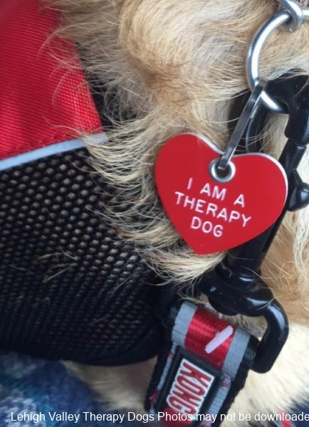 I-Am-A-Therapy-Dog